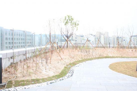 옥상에 마련된 공원.