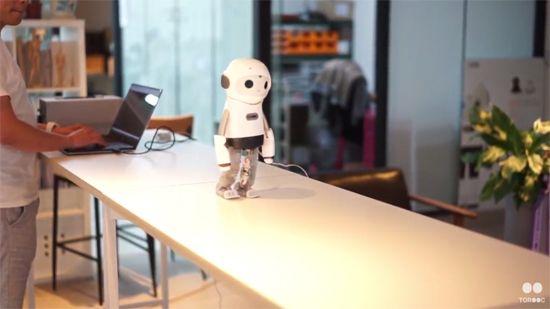 이족 보행을 하는 토룩의 라이봇.